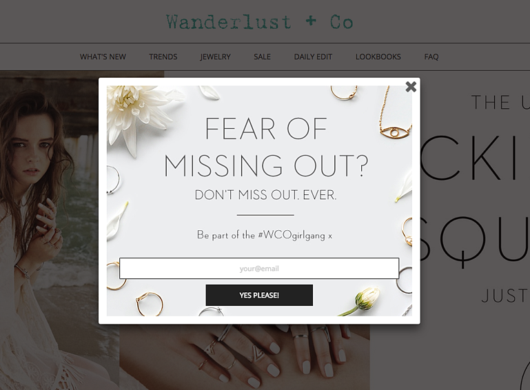 Wanderlust-Co-_-newsletter-_-email-form-_-email-_-email-marketing-_-lead-generation-_-email-pop-up-_-signup-form-_-e-mail
